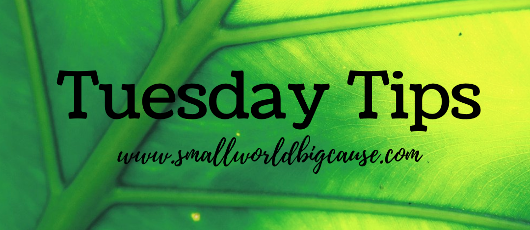 Tuesday Tips: Search using Ecosia.