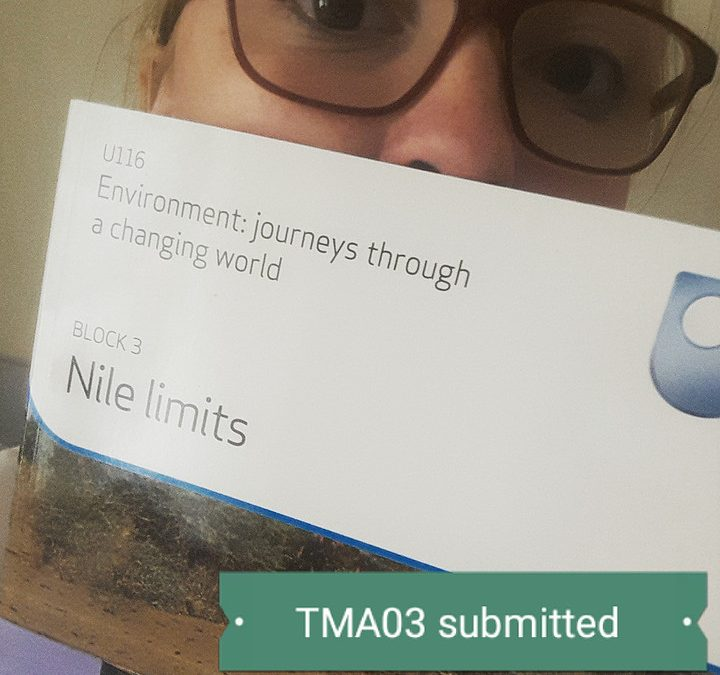 TMA03 Submitted, New Block Begun!