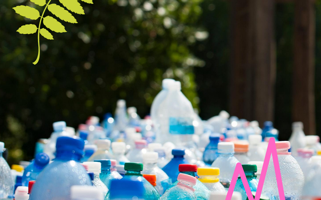 What actually happens to our recycling and why is recycling important?